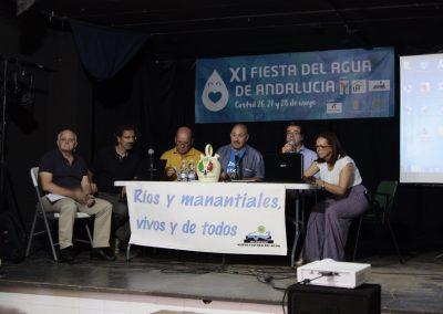 XI Fiesta