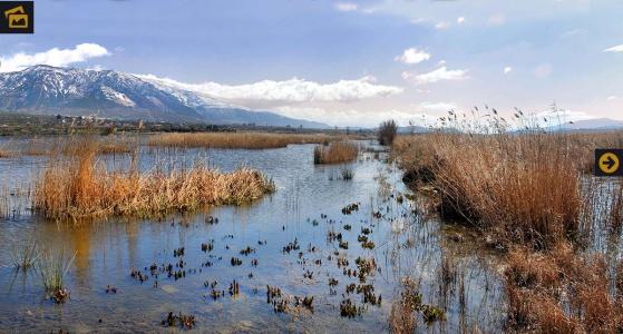 Contaminación de la Laguna del Padul