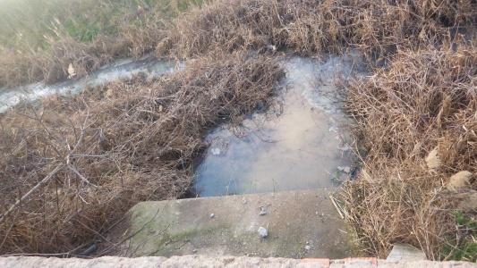 Agresiones al arroyo Almonazar