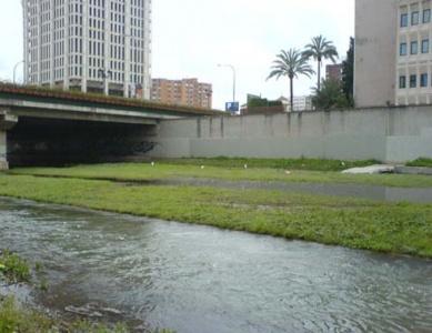 Problemática del tramo urbano del río Guadalmedina