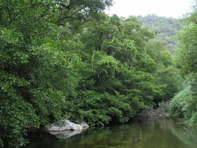 Amenaza de construcción de embalse en el río Genal